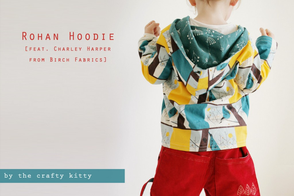 Fine Sweatshirt Sewing Pattern Frieze - Decke Stricken Muster ...